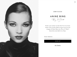 aninebing.com