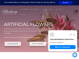 blueberrystreetflowers.co.uk screenshot