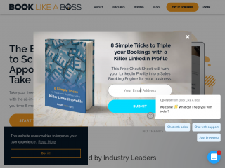 booklikeaboss.com