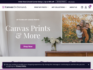 canvasondemand.com